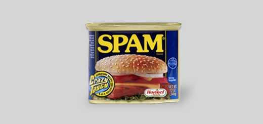 o que é o spam